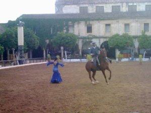 Momento del espectáculo ecuestre en las caballerizas reales de Córdoba